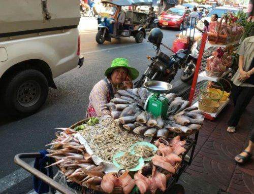 Chatuchak-Thailands berühmtester Markt
